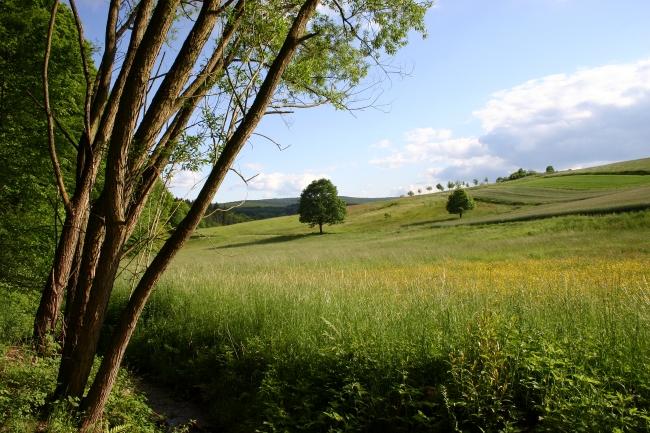 Marbachtal