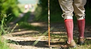 Wandern in Waldhessen