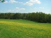 Schöne Landschaft - saubere Luft